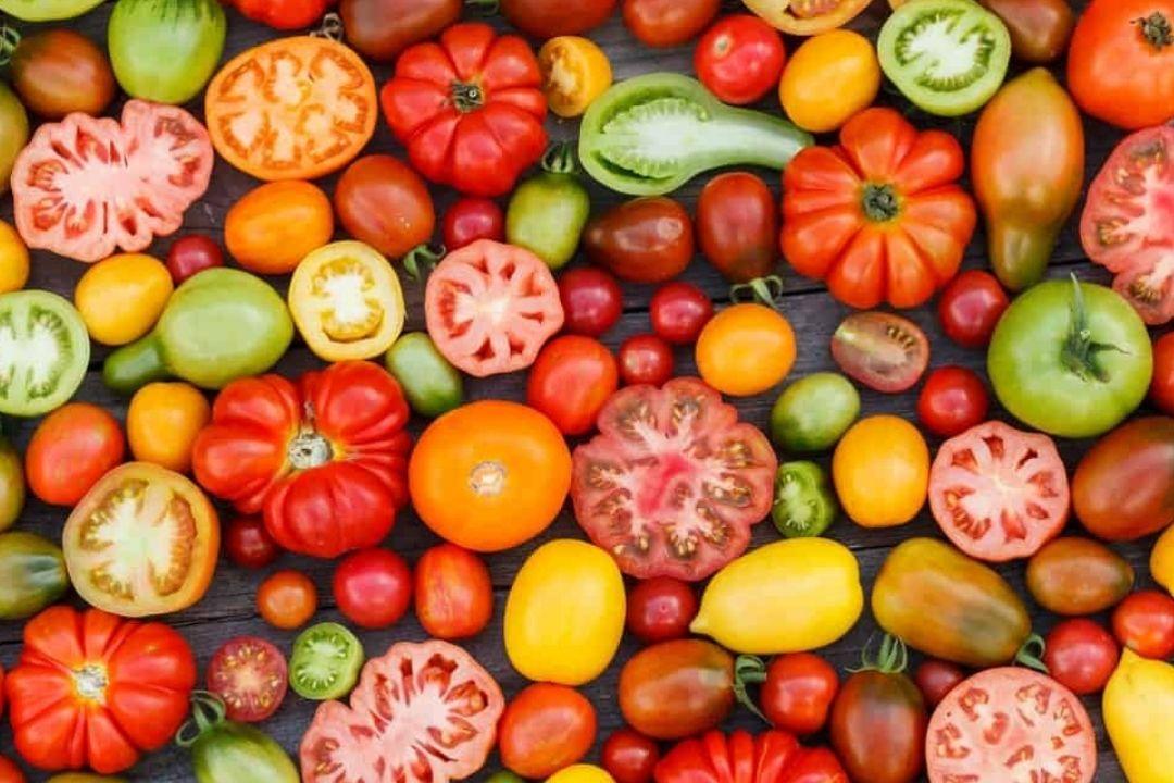 German Queen Tomato